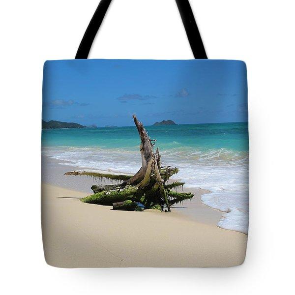 Hawaiian Beach Tote Bag by Anthony Jones