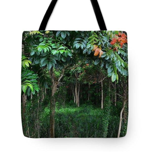Hawaiian Blooming Cashew Nut Trees  Tote Bag