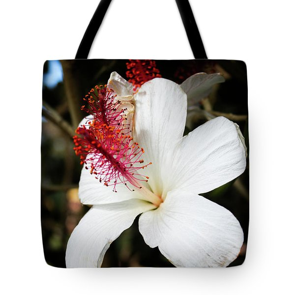 Tote Bag featuring the photograph Hawaiian Hibiscus  by Joann Copeland-Paul