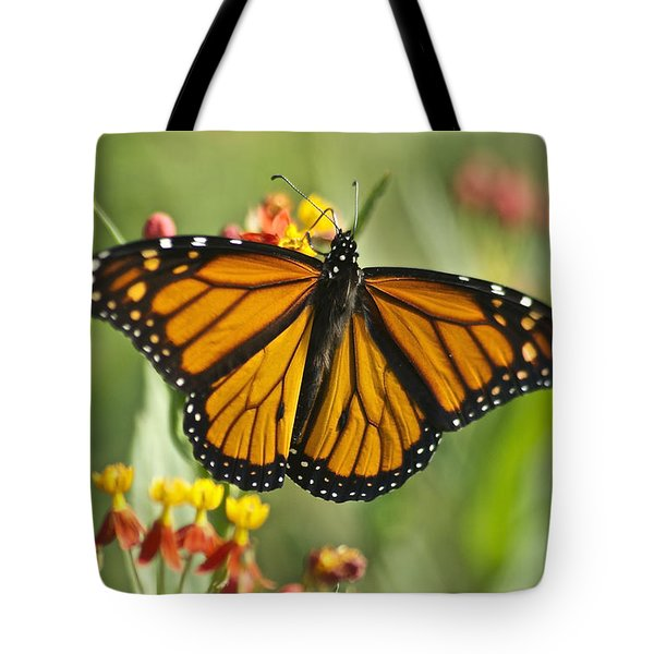 Hawaiian Monarch 3 Tote Bag by Michael Peychich