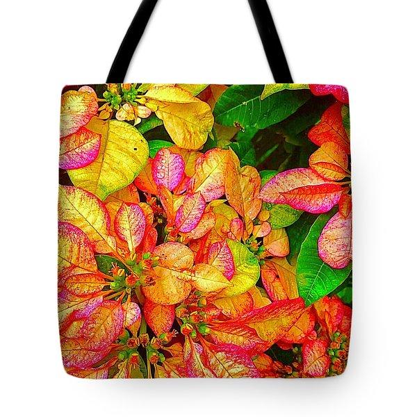 Hawaiian Poinsettias In Puna Tote Bag