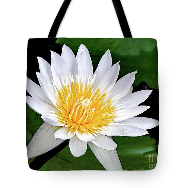 Hawaiian White Water Lily Tote Bag