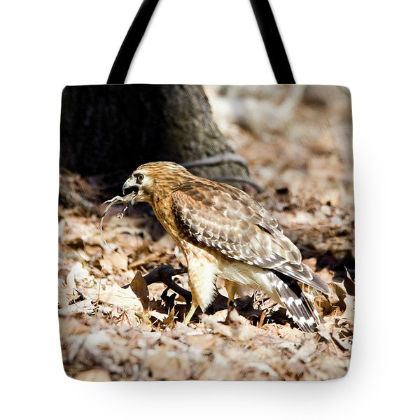 Tote Bag featuring the photograph Hawk And Gecko by George Randy Bass