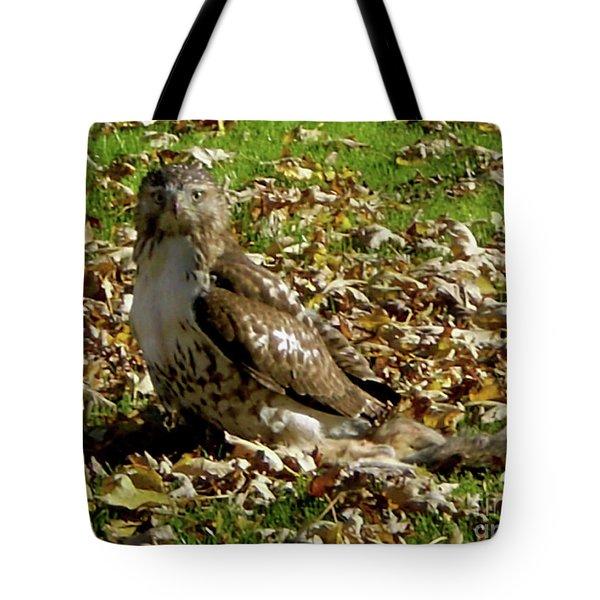Hawk Falling Leaves Tote Bag