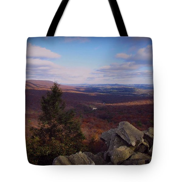 Hawk Mountain Sanctuary Tote Bag by David Dehner
