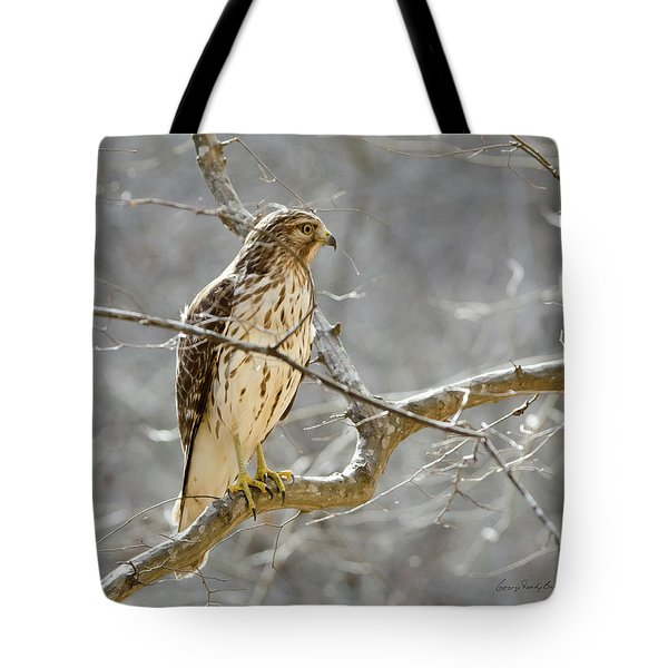 Tote Bag featuring the photograph Hawk On Lookout by George Randy Bass