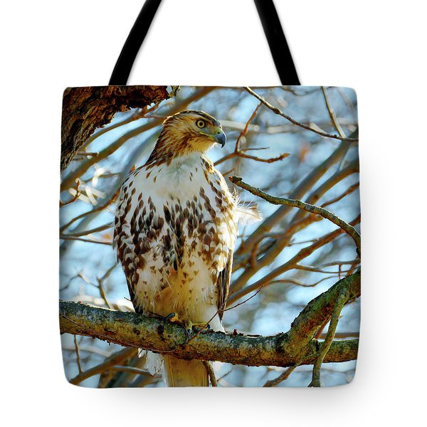 Hawk Tote Bag
