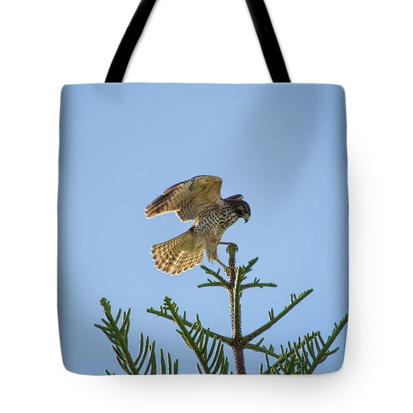 Hawk With Regal Landing Tote Bag
