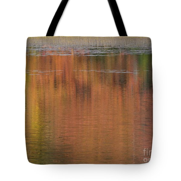 Hawkins Autumn Abstract 2015 Tote Bag