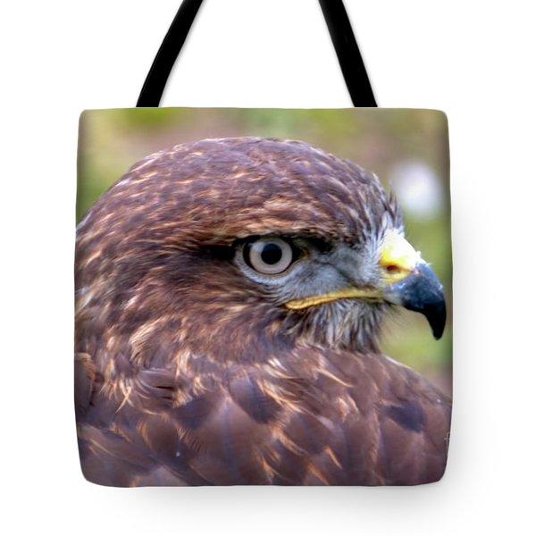 Hawks Eye View Tote Bag by Stephen Melia