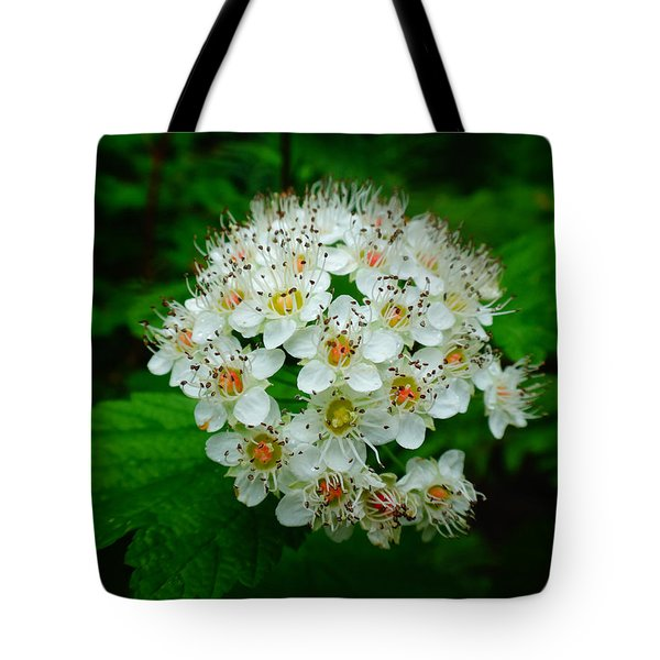Hawthorn Hearts Tote Bag