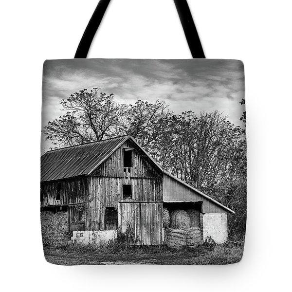 Hay Storage Tote Bag by Nicki McManus