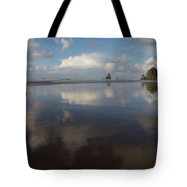Tote Bag featuring the photograph Haystack Needles Horizon Fc by Dylan Punke