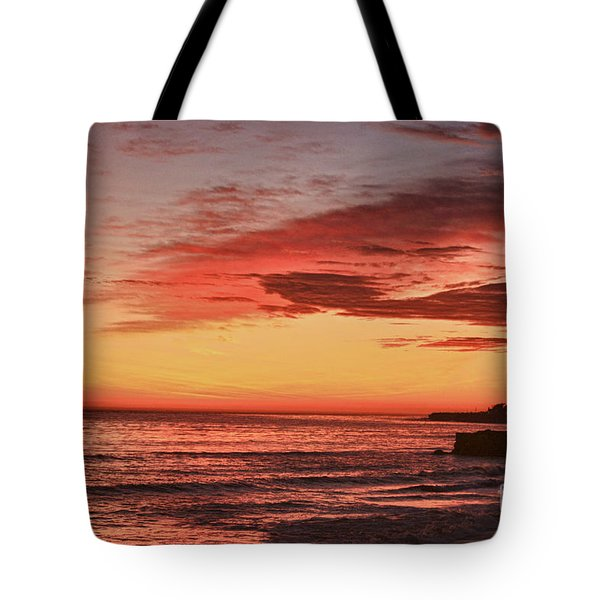 hd 330 Dog Beach 1 HDR Tote Bag by Chris Berry