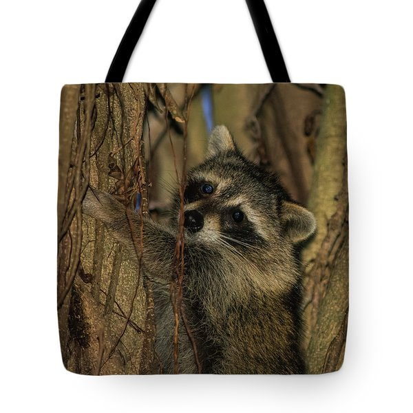 He Found My Nook Tote Bag