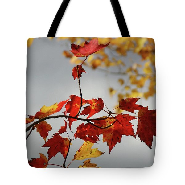 Tote Bag featuring the photograph The Rising by Wayne King
