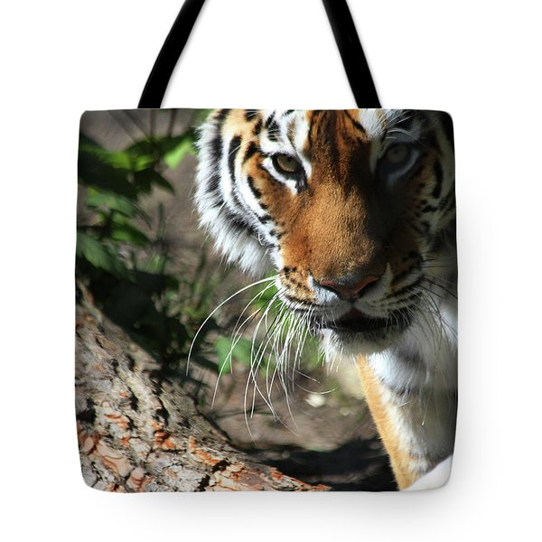 He Sees You Tote Bag by Karol Livote