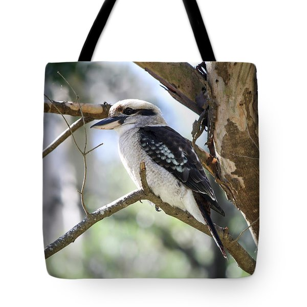 Tote Bag featuring the photograph He Sings The Song Of The Bush by Linda Lees