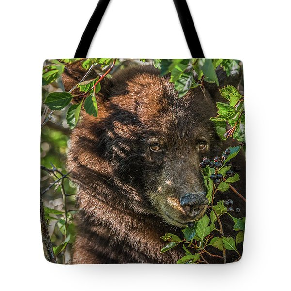 He Was Hiding In A Tree Tote Bag