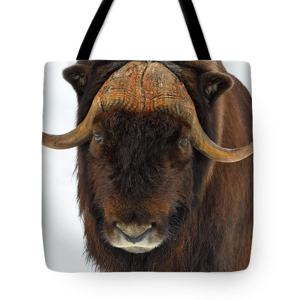 Head Butt Tote Bag by Tony Beck