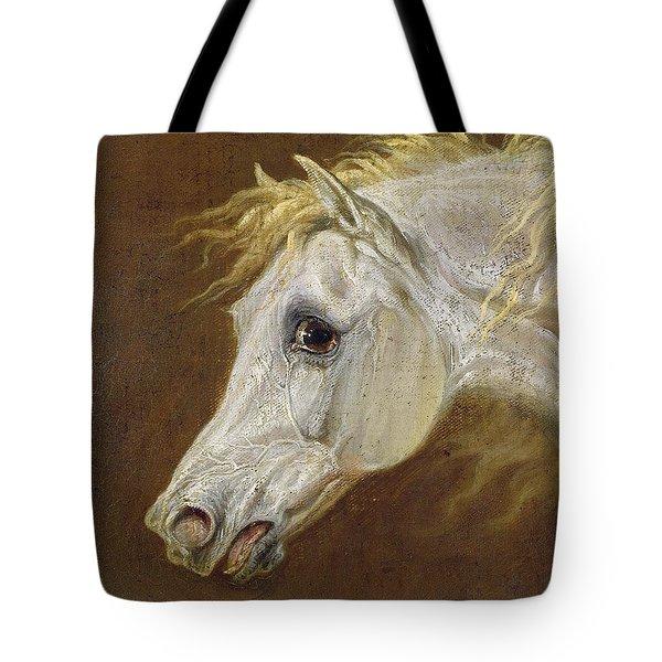 Head Of A Grey Arabian Horse  Tote Bag by Martin Theodore Ward