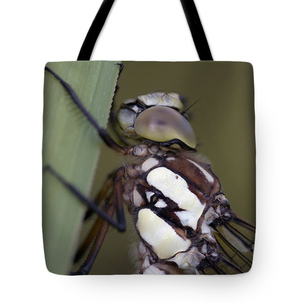 Head Of The Dragon-fly Tote Bag by Michal Boubin