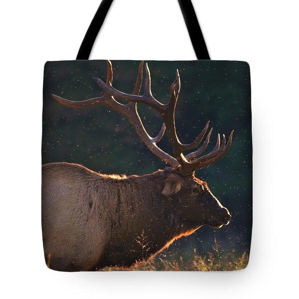 Head Of The Herd Tote Bag