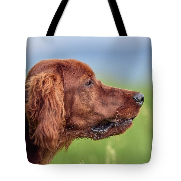 Head Study Tote Bag