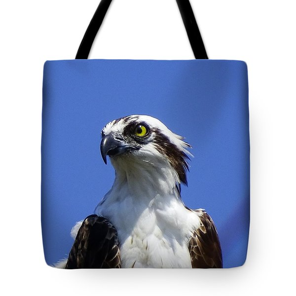 Tote Bag featuring the photograph Heads Up by Cindy Charles Ouellette