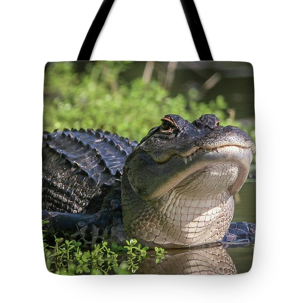 Tote Bag featuring the photograph Heads-up Gator by Tom Claud