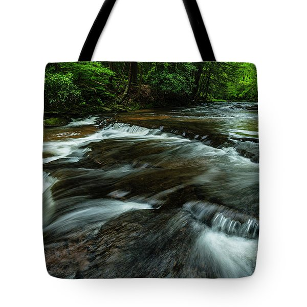 Headwaters Of Williams River  Tote Bag