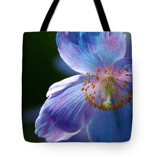 Tote Bag featuring the photograph Healing Light by Byron Varvarigos
