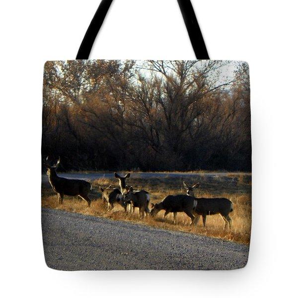 Heard Of Deer Tote Bag