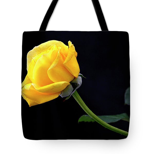 Heart Felt Tote Bag by James Steele