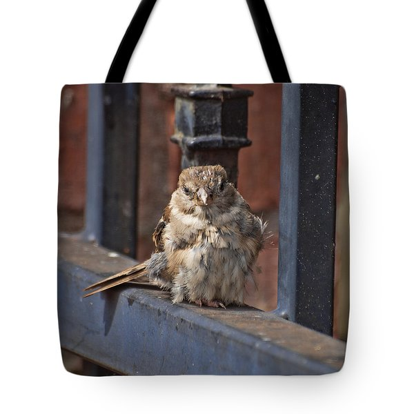Heart Of An Eagle  Tote Bag