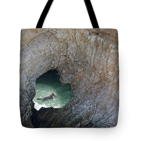 Heart Rock Otter Tote Bag