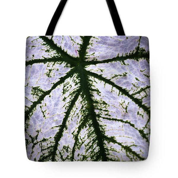 Tote Bag featuring the photograph Heart Shaped Leaf by Catherine Lau