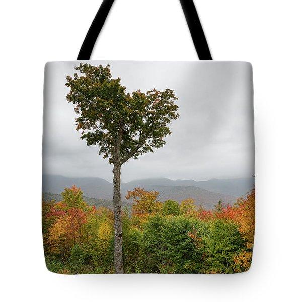 Heart Tree - Kancamagus Highway, New Hampshire Tote Bag