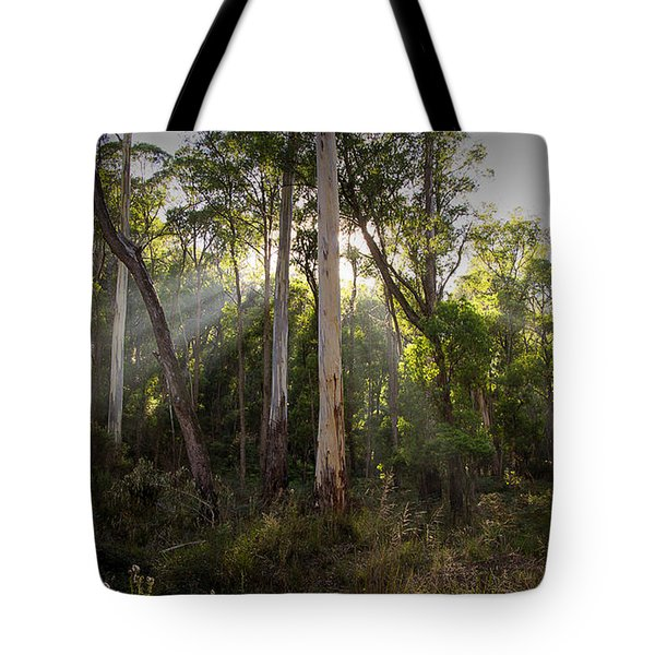 Tote Bag featuring the photograph Heartland by Tim Nichols