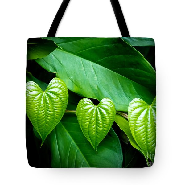 Hearts In Nature Tote Bag