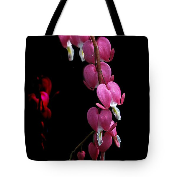 Tote Bag featuring the photograph Hearts In The Dark by Susan Capuano