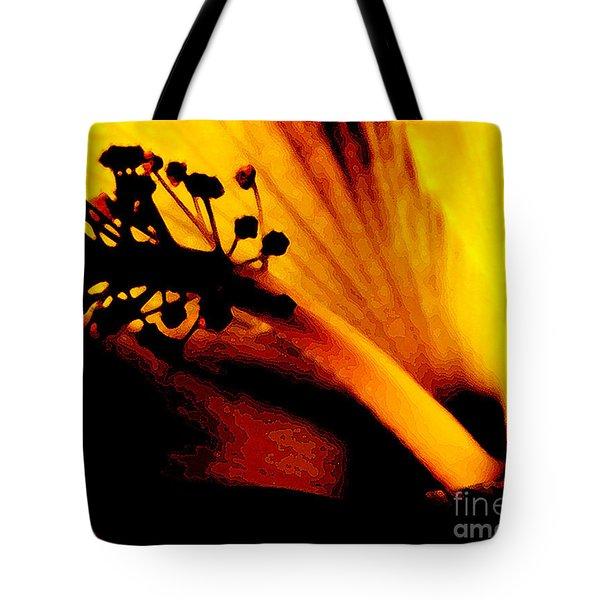 Heat Tote Bag by Linda Shafer