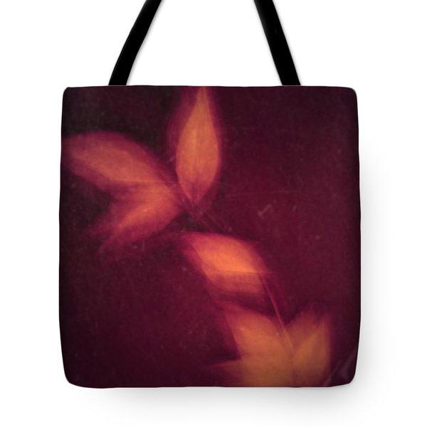 Heated Tote Bag