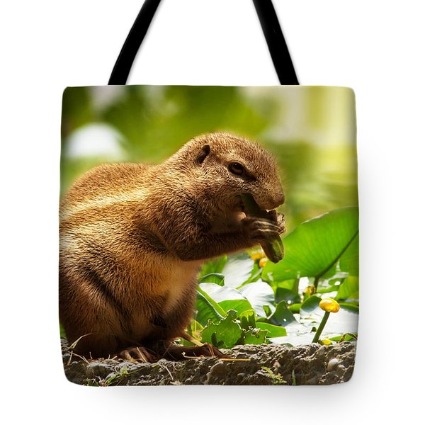 Tote Bag featuring the photograph Heathy Breakfast by Christine Sponchia