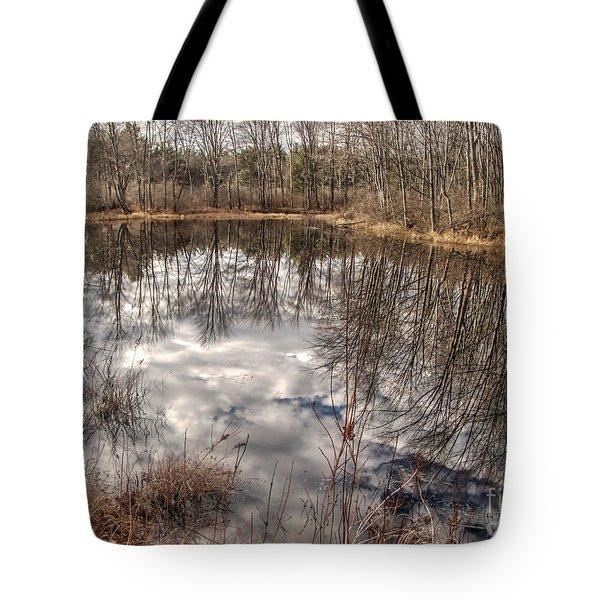 Heaven Below Tote Bag by Betsy Zimmerli