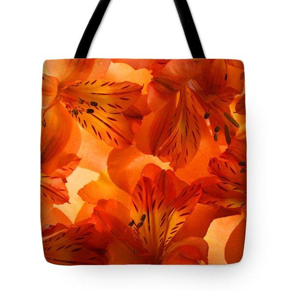 Heavenly Tote Bag by Bobby Villapando