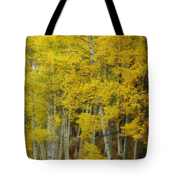 Heavenly Light Tote Bag by Donna Blackhall