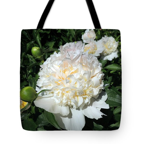 Heavenly White Tote Bag