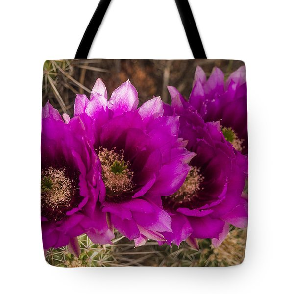 Hedgehog Lineup Tote Bag