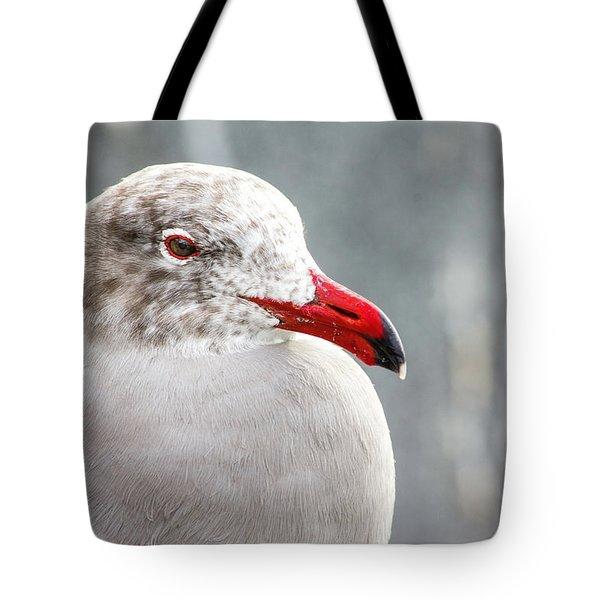 Heerman's Gull Tote Bag